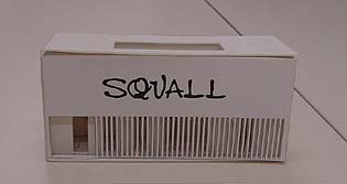 squall-05.jpg