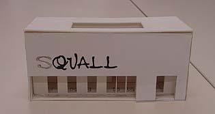 squall-08.jpg
